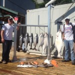 Ketchikan fishing lodges halibut salmon charters