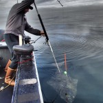 Ketchikan Halibut Fishing Charter